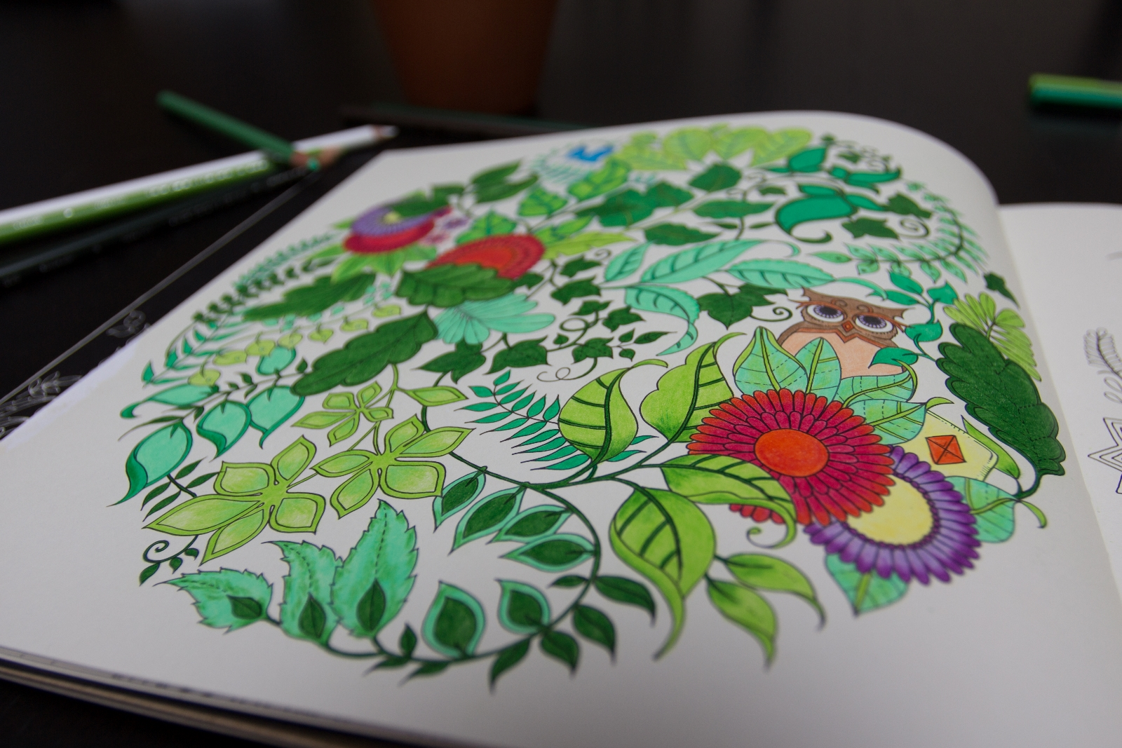 - Enchanted Forest Colouring Book: Review Mommy Mannegren