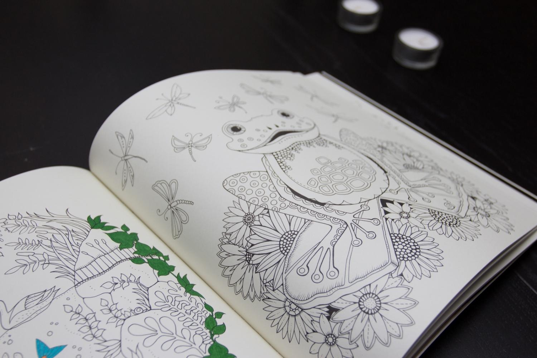 EnchantedForest7