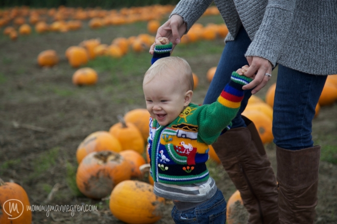 PumpkinPatch4
