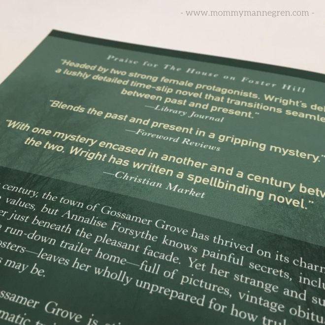 Book Review Gossamer Pond by Jaime Jo Wright.jpg