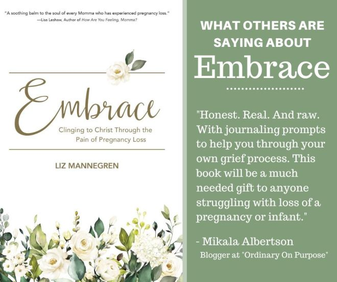 Endorsements for Embrace (2)