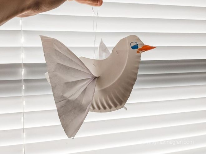 Dove Craft